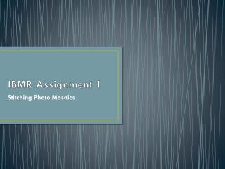 IBMR Assignment 1