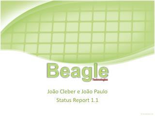 João Cleber e João Paulo Status  Report  1.1