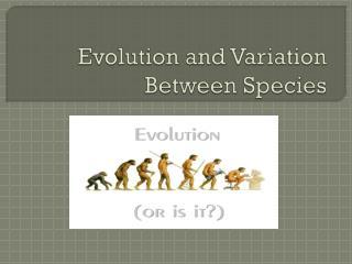 Evolution and Variation Between Species