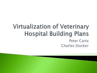 Virtualization of Veterinary Hospital Building Plans