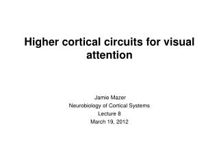 Higher cortical circuits for visual attention