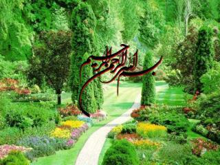 علی  حسین زاده عضو هيئت علمي گروه پزشکی اجتماعی