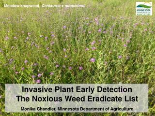 Invasive Plant Early Detection The Noxious Weed Eradicate List