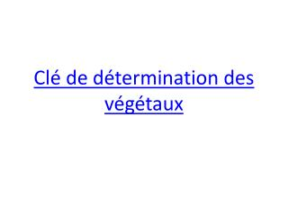 Cl� de d�termination des v�g�taux