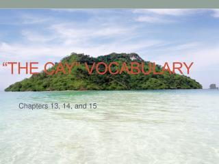 """THE Cay"" Vocabulary"