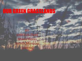 OUR GREEN GRASSLANDS