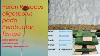 Peran Rhizopus oligosporus pada Pembuatan  Tempe