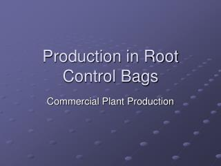 Production in Root Control Bags