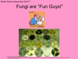 """Fungi are """"Fun Guys!"""""""