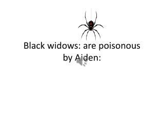 Black widows: are poisonous by Aiden: