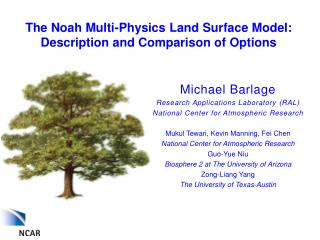 The  Noah Multi-Physics  Land Surface Model: Description and Comparison of Options