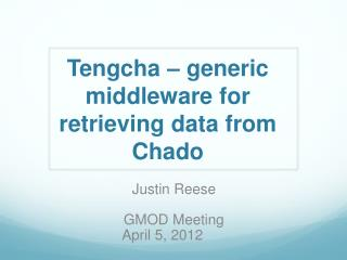 Tengcha  – generic middleware for retrieving data from  Chado