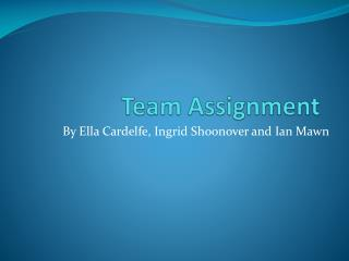 Team Assignment