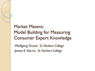 Market Mavens: Model Building for Measuring Consumer Expert Knowledge