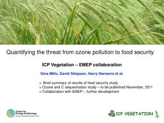 Quantifying the threat from ozone pollution to food security ICP Vegetation – EMEP collaboration