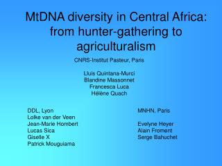 MtDNA diversity in Central Africa: from hunter-gathering to ...