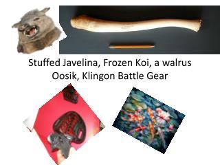 Stuffed  Javelina , Frozen Koi, a walrus  Oosik , Klingon Battle Gear