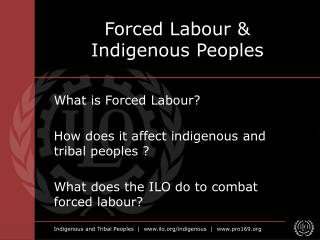 Forced Labour  Indigenous Peoples