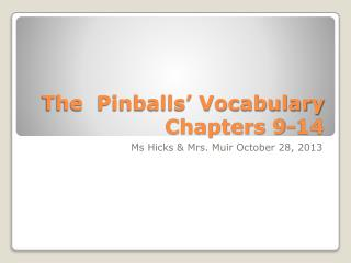 The  Pinballs' Vocabulary Chapters 9-14