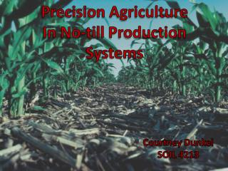 Precision Agriculture In No-till Production Systems