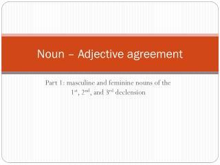 Noun – Adjective agreement