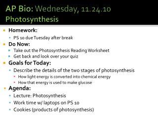 AP Bio:  Wednesday, 11.24.10 Photosynthesis
