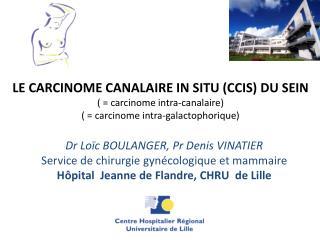 Dr Loïc BOULANGER, Pr Denis VINATIER Service de chirurgie gynécologique et mammaire