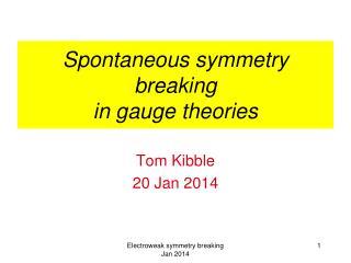 Spontaneous symmetry breaking in gauge theories