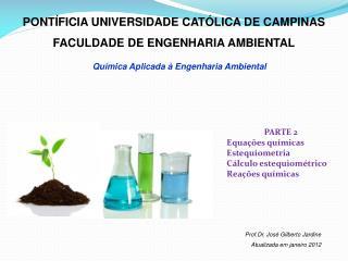 PONTÍFICIA UNIVERSIDADE CATÓLICA DE CAMPINAS FACULDADE DE ENGENHARIA AMBIENTAL