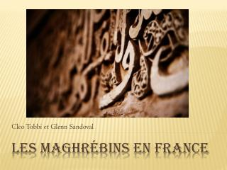 Les  Maghrébins  en France