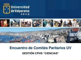 Encuentro de Comités Paritarios UV