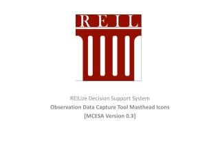 REILize  Decision Support System Observation Data Capture Tool Masthead Icons