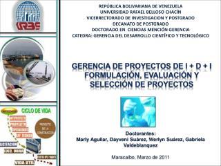 Gerencia de Proyectos de I + D + I   Formulación, Evaluación y Selección de Proyectos