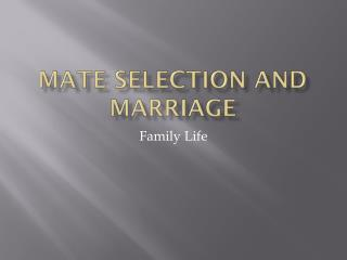 Mate Selection and Marriage