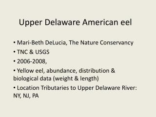 Upper Delaware American eel  Mari-Beth DeLucia, The Nature Conservancy  TNC & USGS  2006-2008,