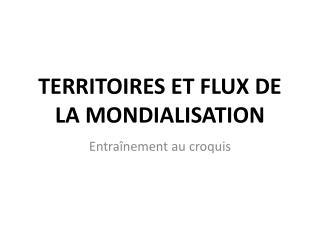 TERRITOIRES ET FLUX DE LA MONDIALISATION