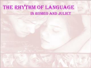The Rhythm of Language