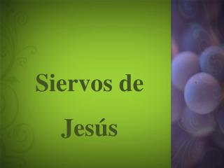 Siervos  de  Jesús