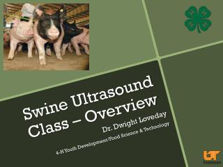 Swine Ultrasound Class – Overview