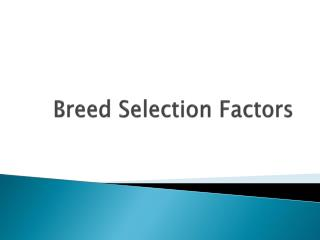 Breed Selection Factors