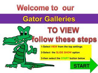 Gator Galleries