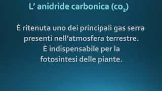 L' anidride carbonica (co 2 )