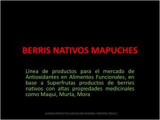 BERRIS NATIVOS MAPUCHES