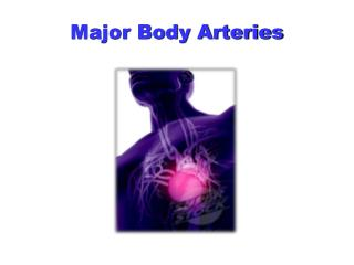 Major Body Arteries