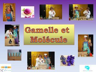 Gamelle et    Molécule