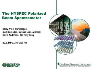 The HYSPEC Polarized Beam Spectrometer