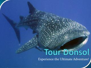 Tour Donsol