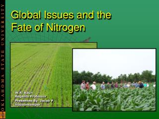 Global Issues and the  Fate of Nitrogen