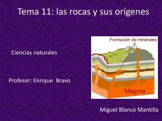 Tema 11: las rocas y sus orígenes .