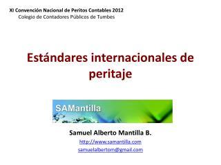 Estándares internacionales de peritaje